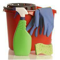 FANTASTILK CLEANING  NEED SOMEONE TO CLEAN UR HOME OR BUSINESS  Bell Coryell