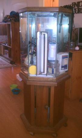 40 gallon fish tank with stand and everything minus fish - $150 (dyess afb)