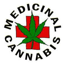 Medical Cannabis Activism and Support group   TX