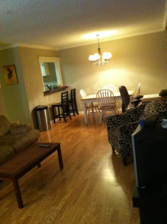 $500 Roommate, Furnished Condo LSU $500 total inc. elecutlscablewifi... (LSU Highland)