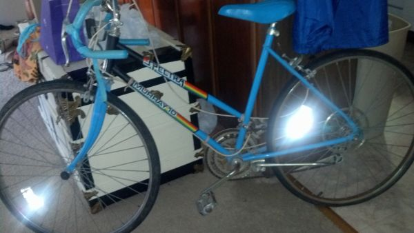 Vintage Murray 10- speed bike - $10