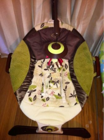 Fisher Price Zen Collection Infant Seat - $25 (Mid City)