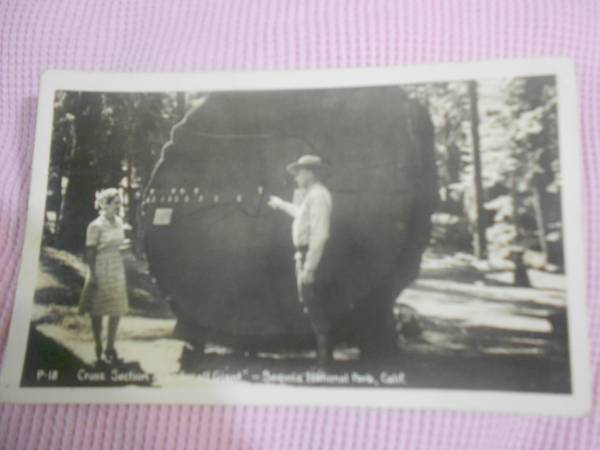 old post card - $6 (ds,watson,central,walker)