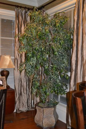 2 Faux Tree ficus Plant very large - $150 (BR)