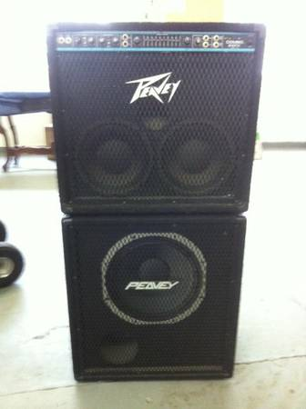 Peavey 2-10 Combo with 15 extention - $300