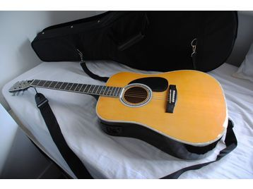 esteban acoustic electric al 100 - $135 (hammond ponchatoula)