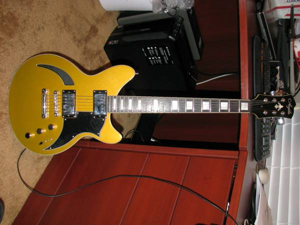 Agile Harm 1 Semi Hollow Goldtop Ebony Fretboard - $225 (Baton Rouge)
