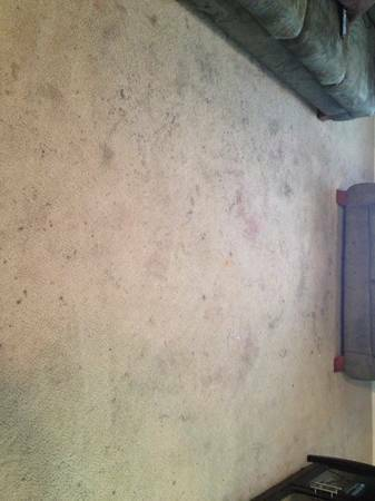Does your Carpet looks like this Call us (713)295-9073 (Truck Mounted Machine) $20 Per RM)))