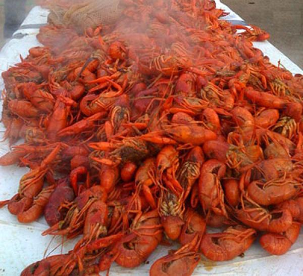 Boiled CRAWFISH to go