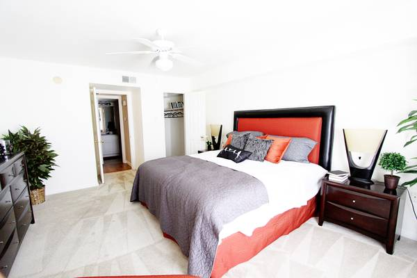 -  909   1br - 846ft sup2  - Humungous apartments here at Brompton Court  Houston  TX - 77025