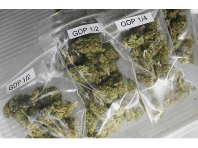 Buy best quality marijuana strains available     call or text    tel240 324-8173