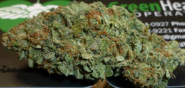 Good quality Kush at affordable prices 240 324-8173