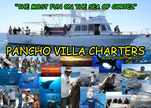 GO DEEP SEA FISHING IN ROCKY POINT  MEXICO - GREAT FAMILY FUN    PANCHO VILLA CHARTERS
