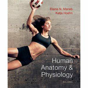 Human Anatomy and Physiology 9th Edition -  150  Odessa