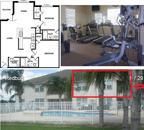 -  800   2br - Quiet apartment in gated community  North McAllen