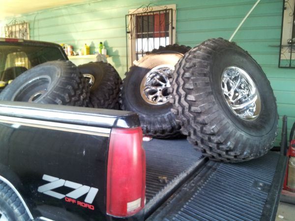 Gumbo Monster mudders - $1500 (brownsville)