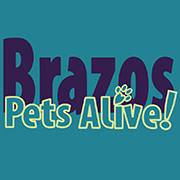 Volunteer for Brazos Pets Alive and help rescue pets  BCS