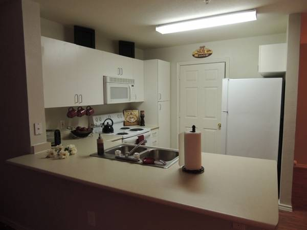 $400 1br - 885ftsup2 - CHEAP Summer sublease apartment (The Heights at Luther- College Station)
