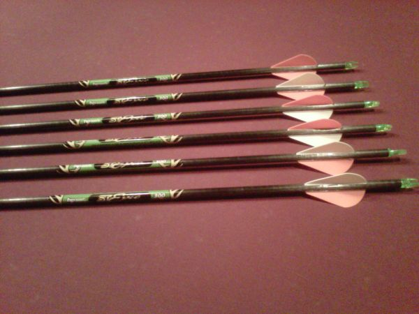 EASTON ARROWS - $50 (College Station)