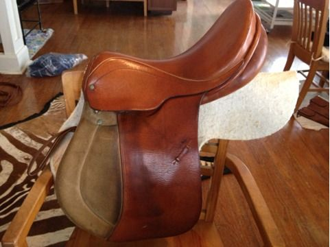 17 ENGLISH SADDLE, Courbette Fels Bach All Purpose Eventing - $210 (College Station)
