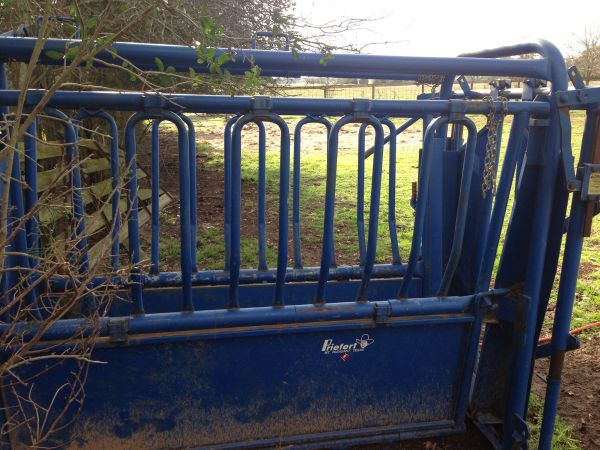 PRIEFERT SQUEEZE CHUTE WITH DOLLY