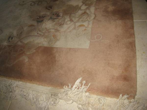 luxury Chinese carpet - $250 (Bryan near Walmart)