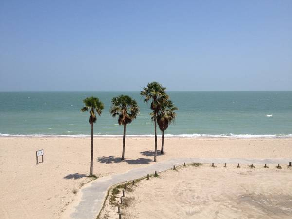 $135 1br - 450ftsup2 - Amazing rates on Beach front properties (Corpus Chirsti)