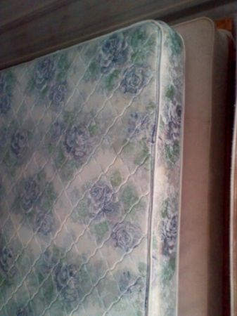 Queen Ortho- Mattress - $30