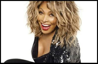 Especially Rare TINA TURNER Platinum Record Plaque With Her Name On It For Sale