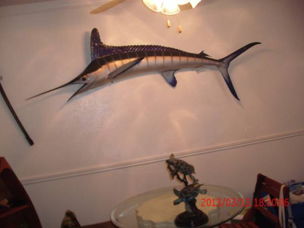 Beautiful 7 Wall Mounted Swordfish and More - $1 (Ocean Drive)