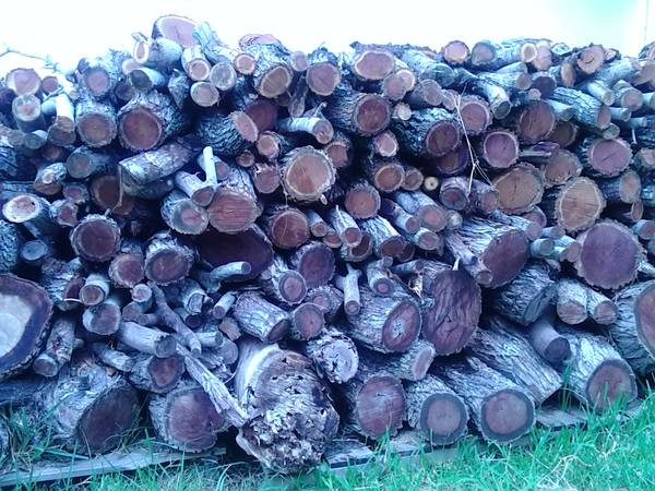 Mesquite wood for smoker - $65 (Corpus, So)