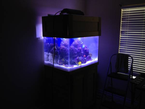 90 gallon aquarium reef ready - $1500