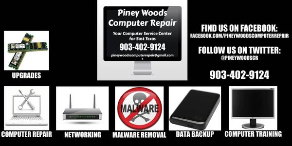 PINEY WOODS COMPUTER REPAIR  GILMER  TX
