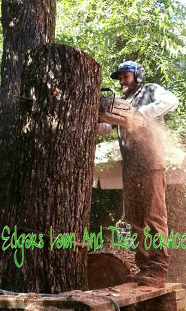 EDGAR S LAWN  amp  TREE SERVICE   TYLER   SURROUNDING AREAS