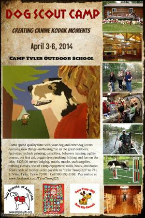 Photographer for Dog Scout Camp Needed  Camp Tyler Outdoor School