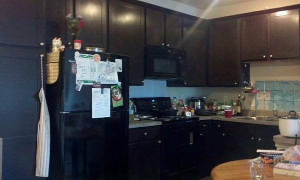 - $459 1br - SubletSublease One Bedroom in JULY. Walk to UNT. $459 ALL BILLS PAID (Denton)
