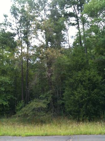 x0024 8500 LONGVIEW AREA LOT  8 500  Gregg Upshur Area