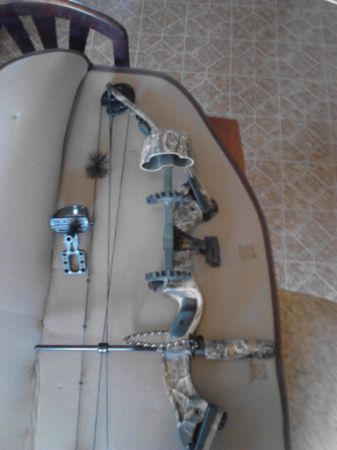 hoyt intruder compound bow - $125 (mount pleasant tx)