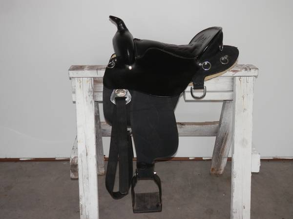 16 Endurance or Pleasure Saddle - Nice - $275 (Sherman Area )