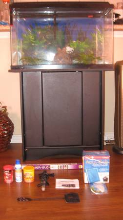 Fish Tank Aquarium Setup Everything you will need to get started (Tyler, Tx)
