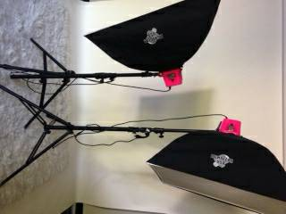 Alien Bees flash units wstands soft boxes - $600 (Tyler)