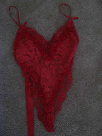 Gently Used Lingerie - $20 (Fort Myers, FL)