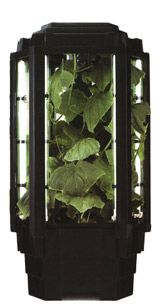 hydro hydroponic grow cabinet Phototron with extras - $300 (Galveston)