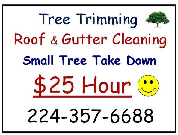 9600 $25 Hour Small Tree Removal Trimming Roof Gutter Cleaning (9600 The Woodlands Spring Conroe Area)