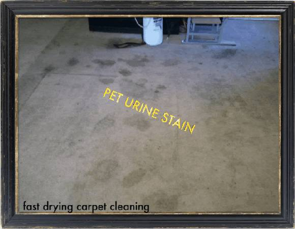 Does your Carpet Look like This (713)295-9073 Same Day Service (($20 Per RM Van Power Equipment))