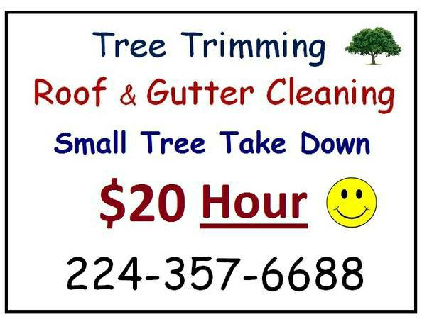 9600 $20 Hour Small Tree Removal Trimming Roof Gutter Cleaning (9600 The Woodlands Spring Conroe Area)