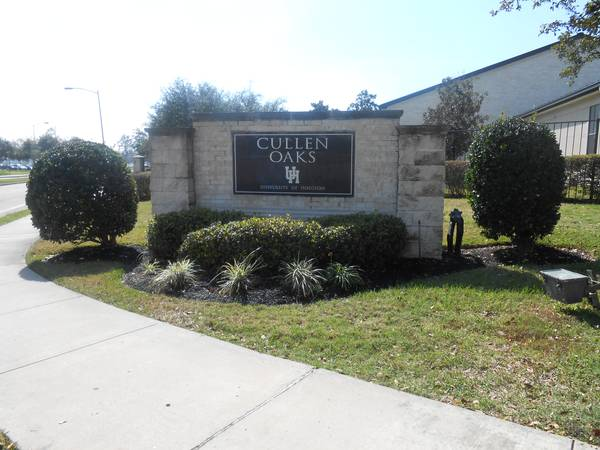 Summer housing on the spot (Cullen Oaks (UH))
