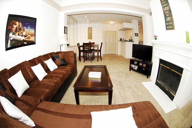 1br  Specious  Welcoming Fully Furnished