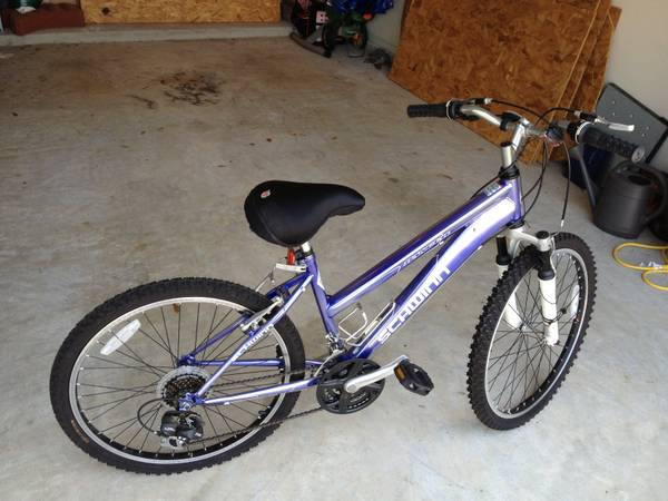 21 Speed Schwinn Mountain Bike - $100 (Pearland)