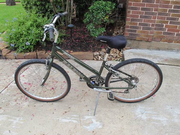 Raleigh SC30 (Womans bike) - $100 (Spring)